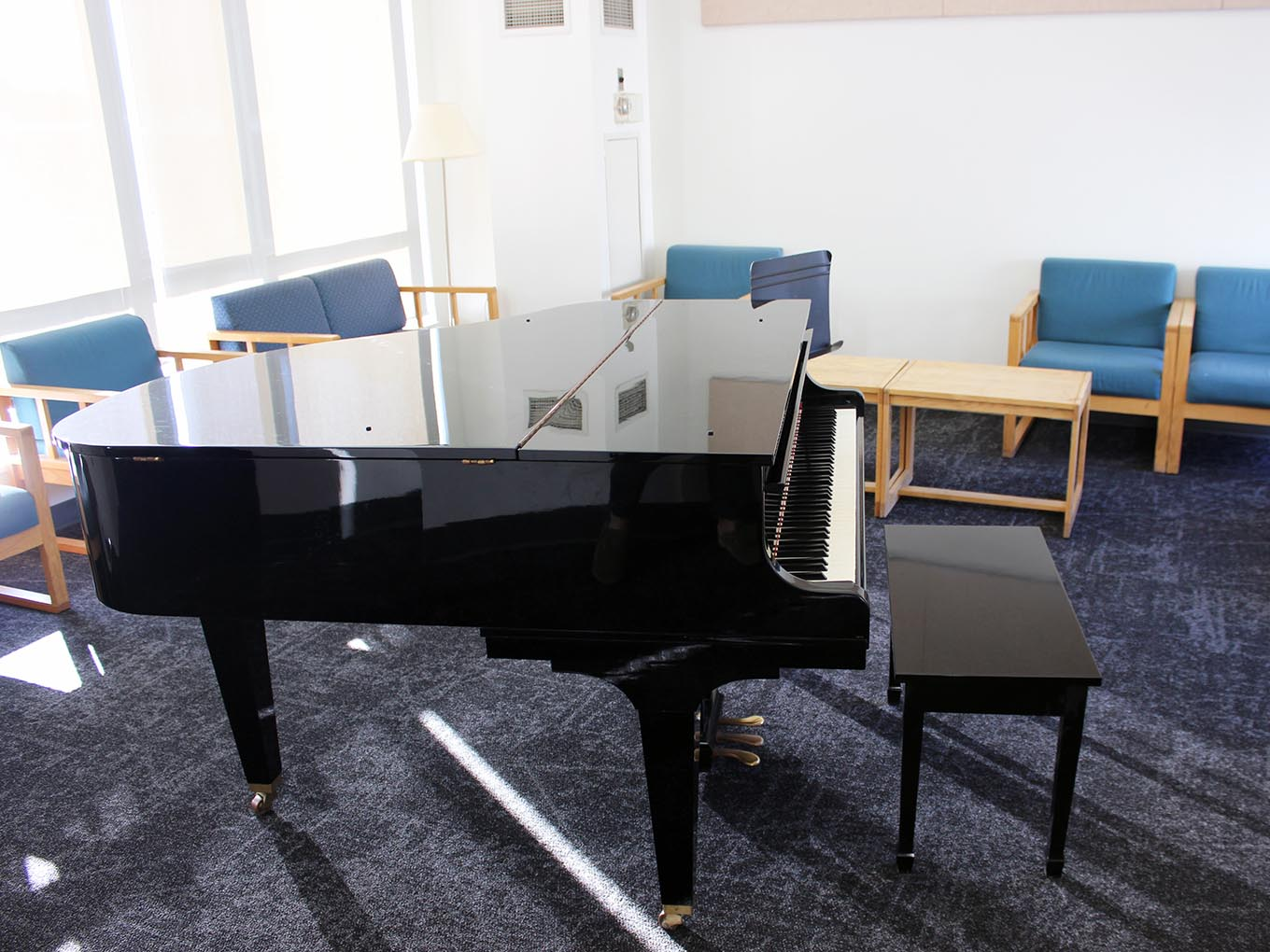 Suites and Amenities - Music room
